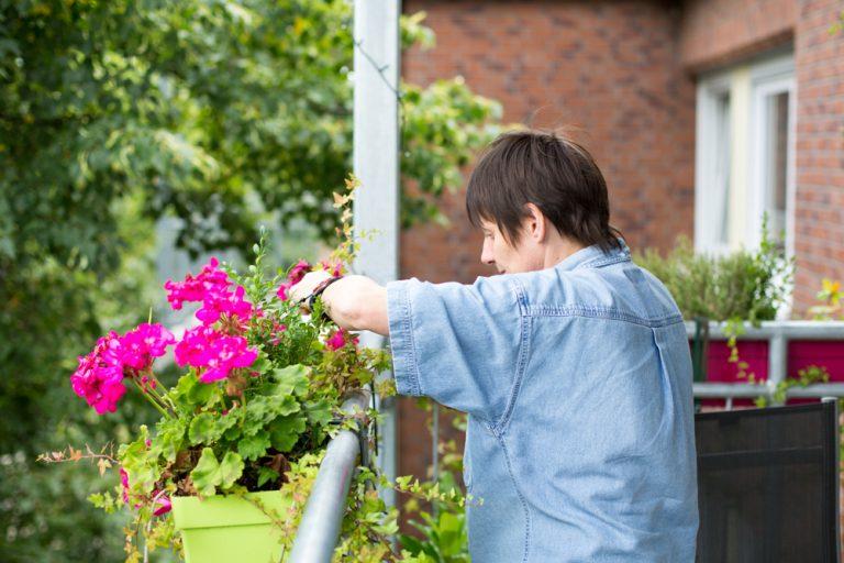 Auf einem Balkon ist eine Frau dabei ihre pinken Blumen im Blumentopf zu pflegen.