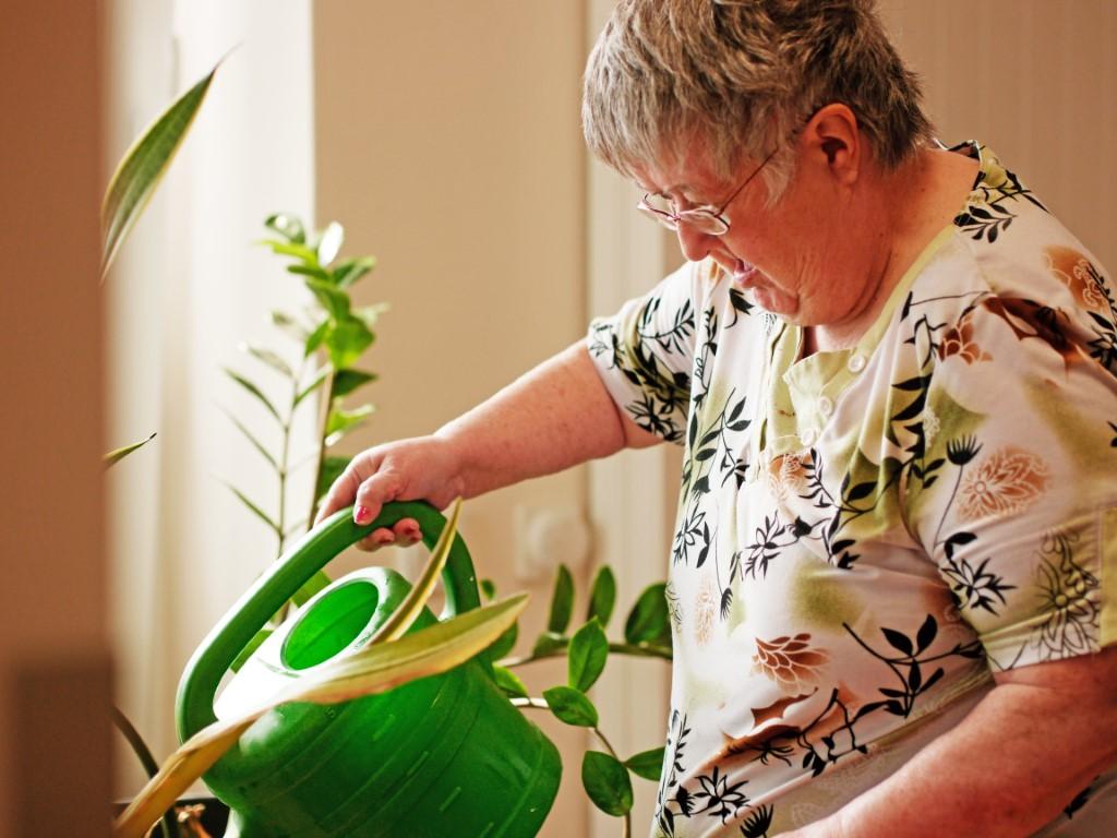 Eine Dame ist dabei eine Blume mit einer grünen Gieskanne zu gießen.