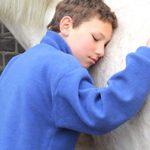 Ein Junge lehnt mit seinem Kopf an der Schulter eines weißen Pferdes und schließt die Augen. Seine rechte Hand schmiegt sich an das Fell.